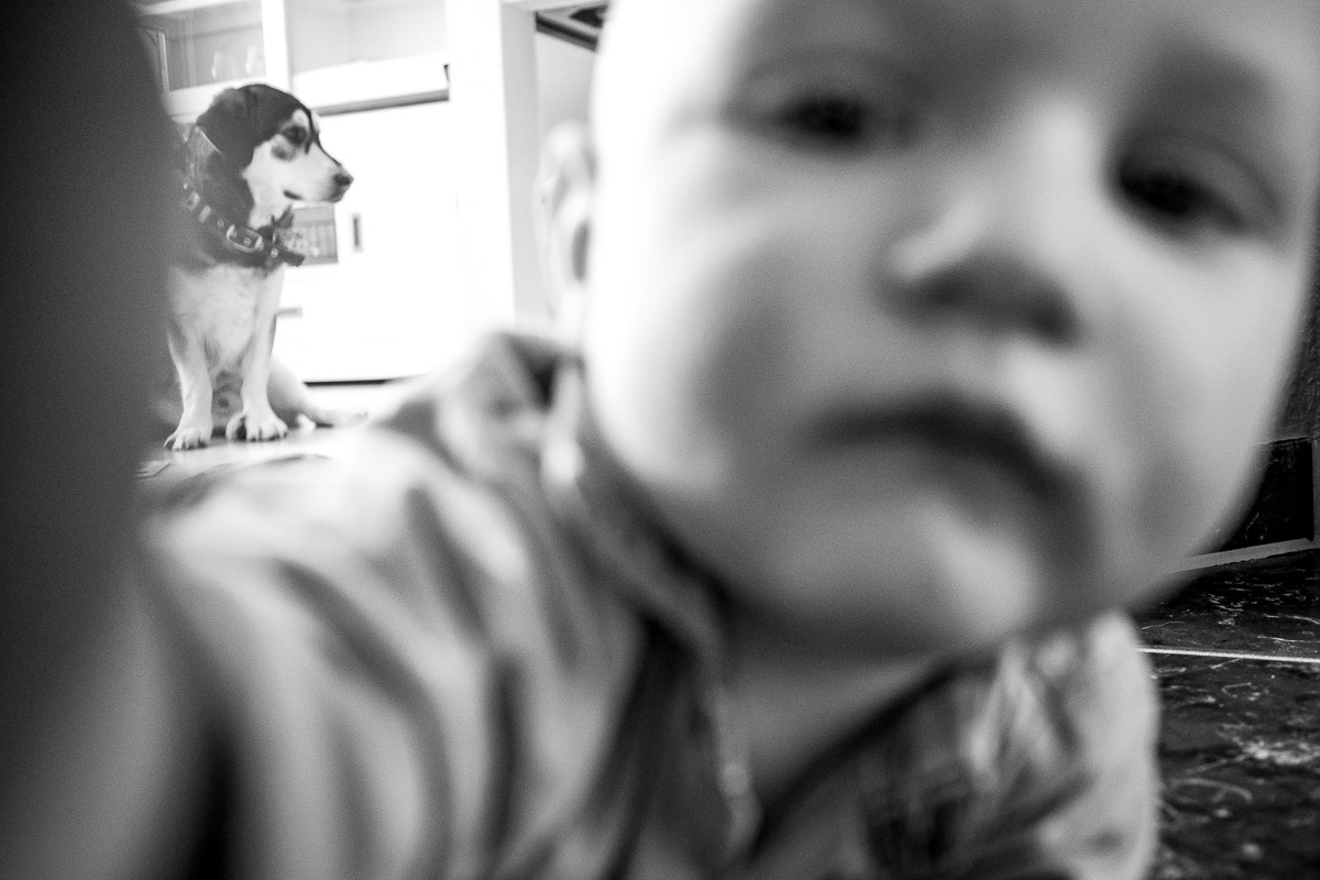 Moderne Kinderfotos mit Hund Solingen