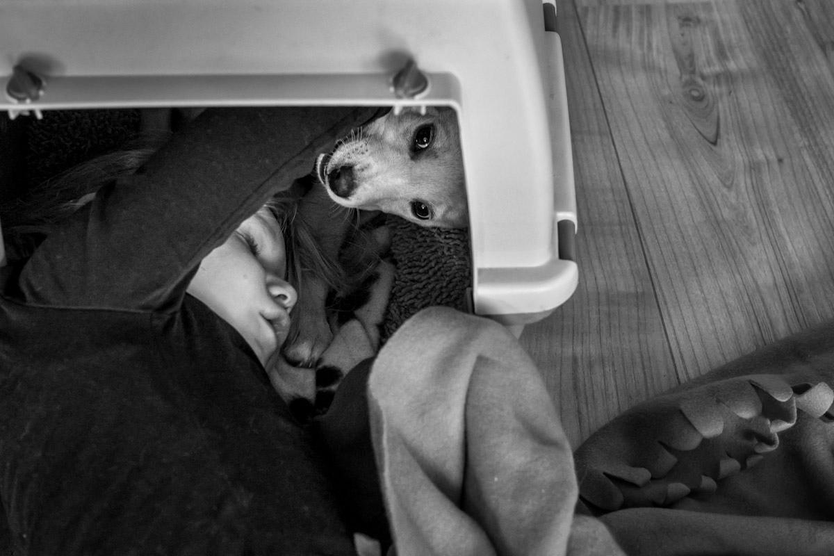 Familie mit Hund Familienfotograf