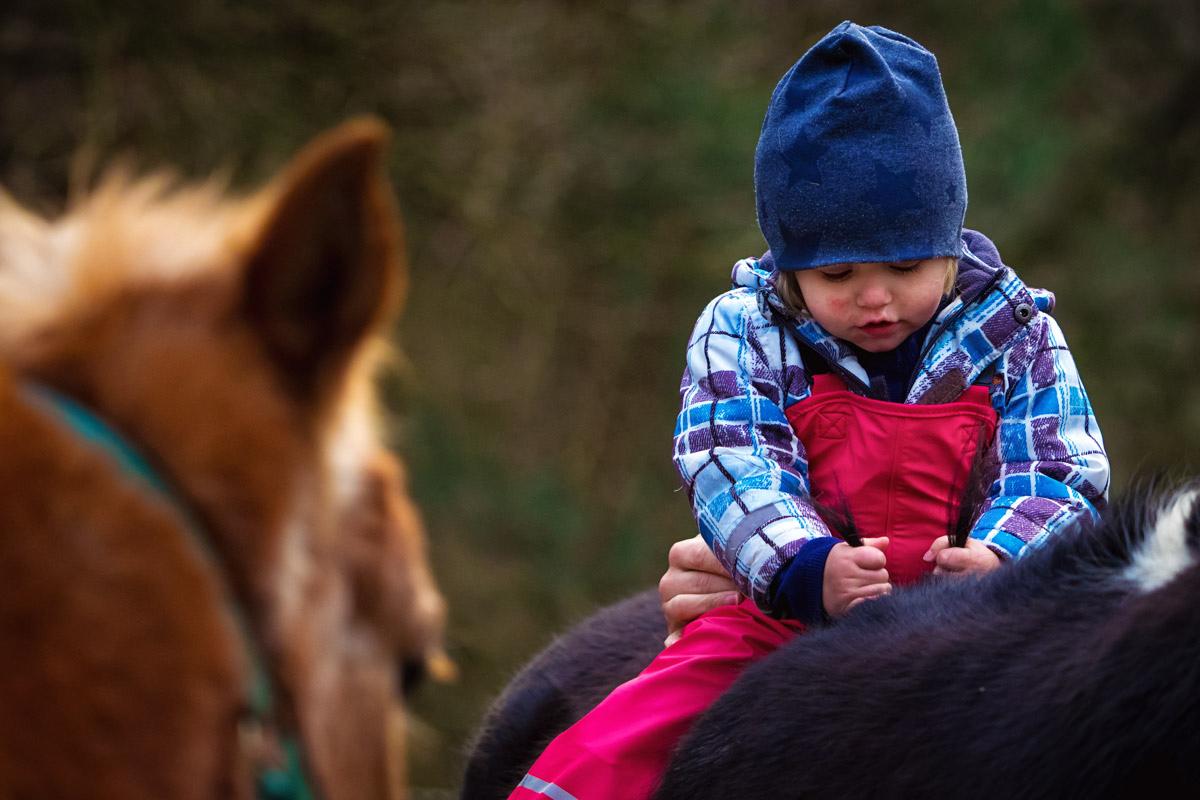 Kind reitet auf Pferd Familienfotografin