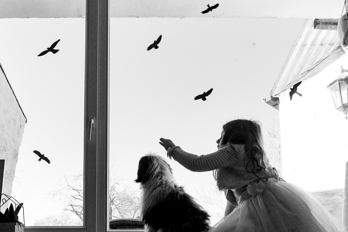 Kinder mit Hund Familienfotos